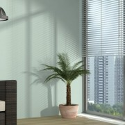 Dubai Office Blinds