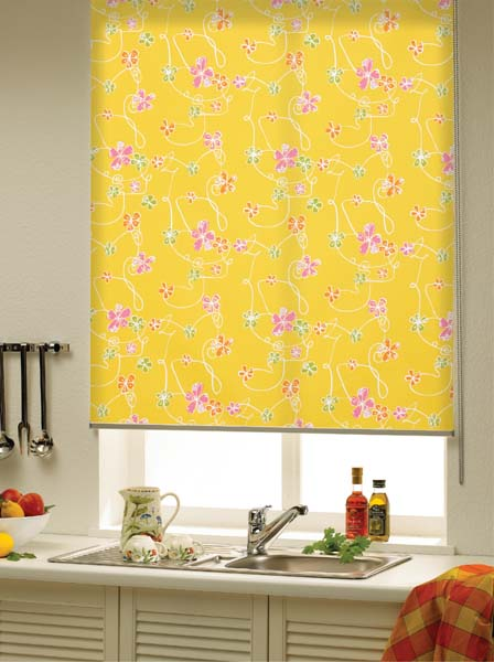 The Hull Roller Blind
